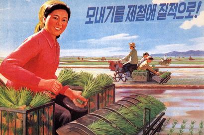 「田植えを適期に質良く」