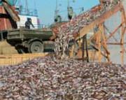 北朝鮮の漁港