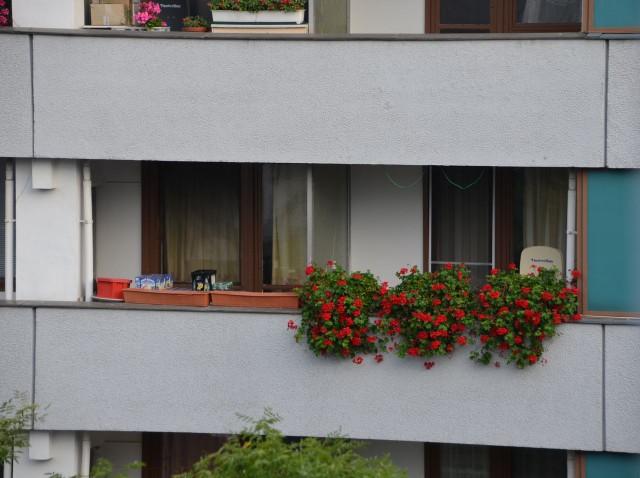 ベルリン大使館5