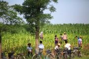 北朝鮮の農場(本文とは関係ありません) ©Aleckeung
