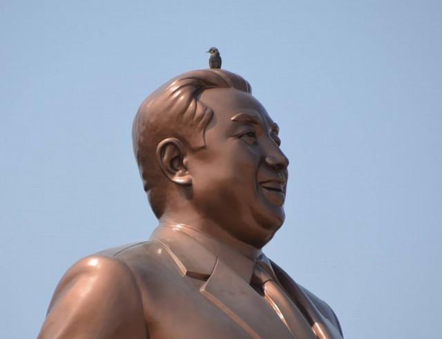 20150500金日成銅像小鳥