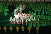 マスゲーム「アリラン」の一幕。ニワトリ、ウサギ、ジャガイモの踊り(画像:Stephan)