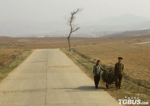 薪を荷車に載せて運ぶ北朝鮮の人(画像:TGBUS.com)