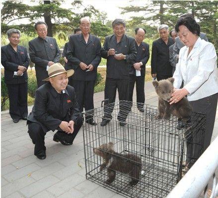 動物園を視察して子グマを見る金正恩氏(資料写真)