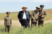 農場を現地視察する金正恩氏