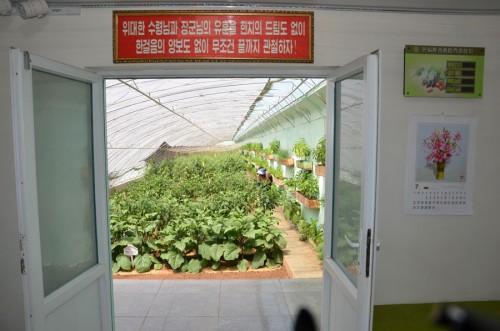 平壌郊外の将泉野菜専門協同農場の温室。党幹部用の野菜を栽培しているところで一般市民の手には届かない。(画像:朝鮮の今日)