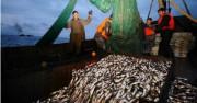 洪原水産事業所の漁船(画像:労働新聞)