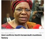 ナミビアのナンディ・ダイッワ外交担当副首相