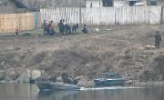 北朝鮮の国境警備隊の兵士が警備艇に乗ってパトロールを行っている。女性たちが畑仕事に精を出す姿も見える。(画像:デイリーNK)
