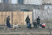 個人耕作地で畑仕事に精を出す女性たち。犬の姿も見えるが、留守宅につなぎ留めておくと盗まれてしまうからだという。(画像:デイリーNK)