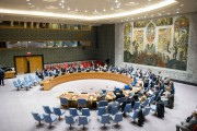 20161130国連安全保障理事会/国連ホームーページより(UN Photo/Rick Bajornas)