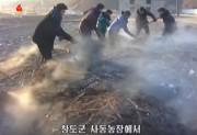 江原道昌道郡泗東協同農場での堆肥生産(画像:朝鮮中央テレビ2016年1月29日ニュースキャプチャー)