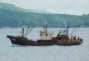 北朝鮮の漁船(デイリーNK)