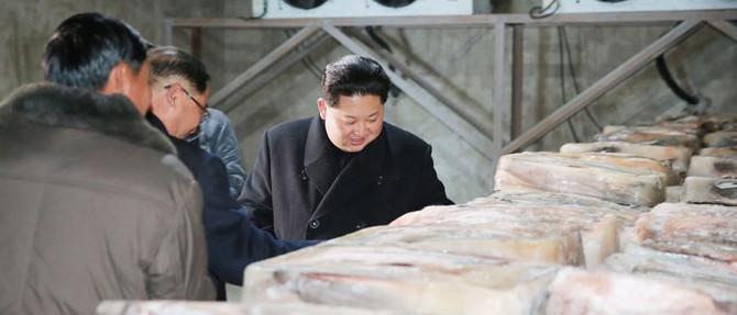 順川ナマズ工場を現地指導した金正恩氏(2017年11月28日付朝鮮中央通信より)