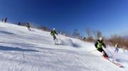 南北合同スキー訓練(朝鮮中央通信)