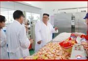 松涛園総合食品工場を現地指導する金正恩氏(2018年7月26日付朝鮮中央通信)