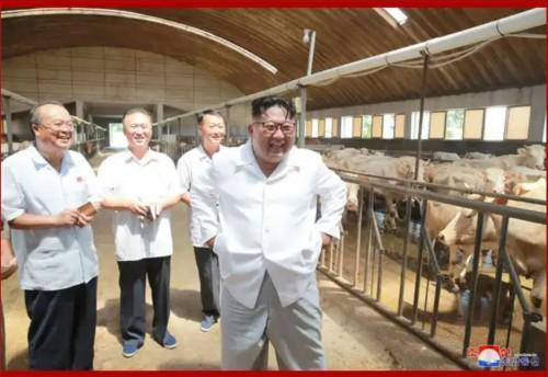 雲谷地区総合牧場を現地指導する金正恩氏(2018年8月13日付朝鮮中央通信)