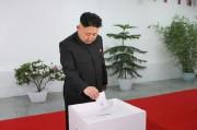 2014年の選挙で投票する金正恩氏(朝鮮中央通信)