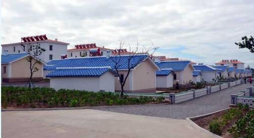 将泉野菜専門協同農場の農村文化住宅(画像:朝鮮の今日)