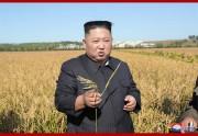 軍傘下の農場を現地視察した金正恩氏(2019年10月9日付朝鮮中央通信より)
