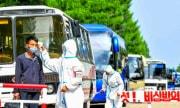 北朝鮮の防疫活動(労働新聞)