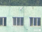 北朝鮮が最近、中朝国境地帯に設置した監視カメラ(デイリーNK)