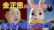 高英起チャンネル「金正恩氏に影武者説・真相が明らかに」