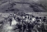 朝鮮戦争で捕虜になった韓国軍兵士と護送する北朝鮮の兵士(東亜日報)